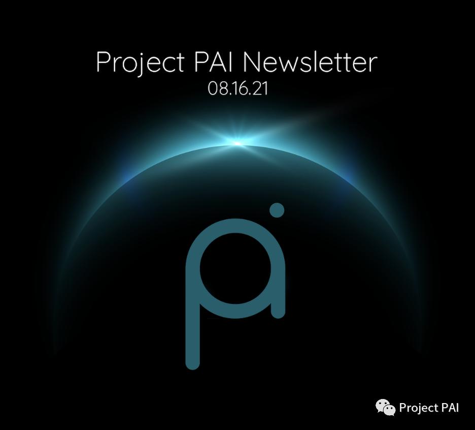 Project PAI 项目进度- 2021年8月16日