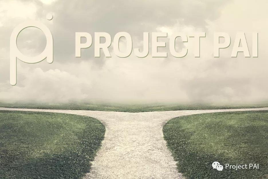 Project PAI 项目进度- 2021年9月13日
